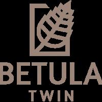 Betula_logo_pion_kolor